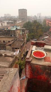 8-Rajendra malik street Kol 05
